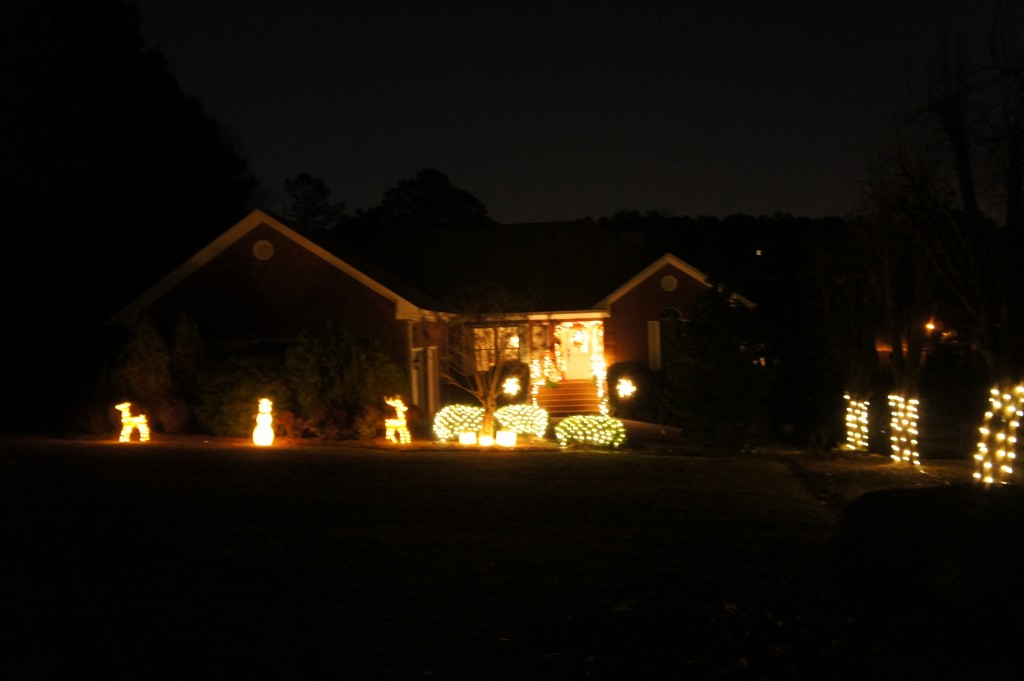 My honey did a great job with the outdoor lights!