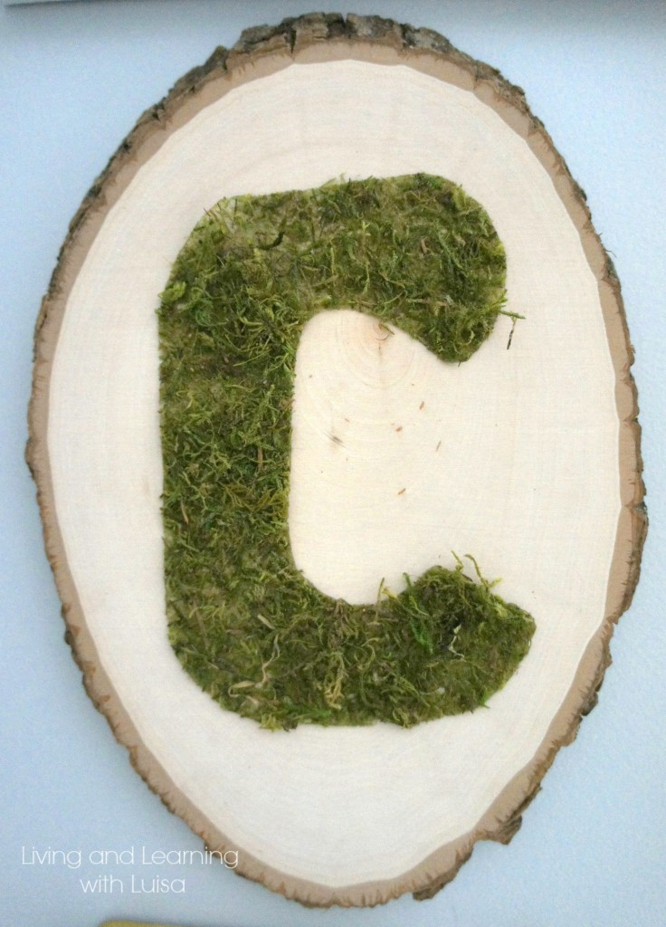 moss monogram on wood slice